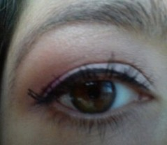 Neutral Eye With Pop of Purple 4