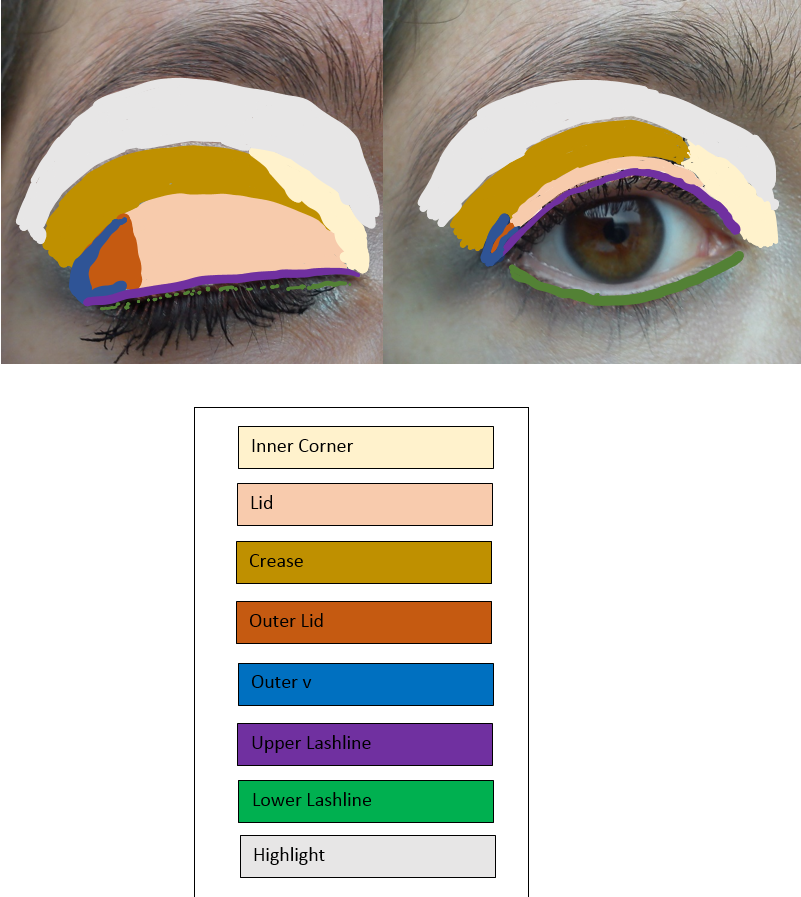 Parts Of The Eye Make Up By Saira Lee